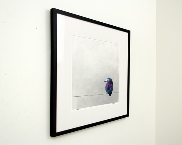 Mr. Purple - framed limited edition from left