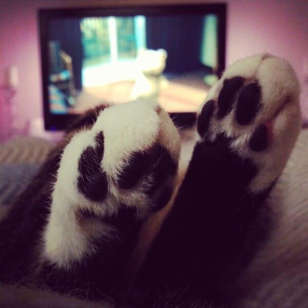 rasmus_bunny_feet_christmas_2012