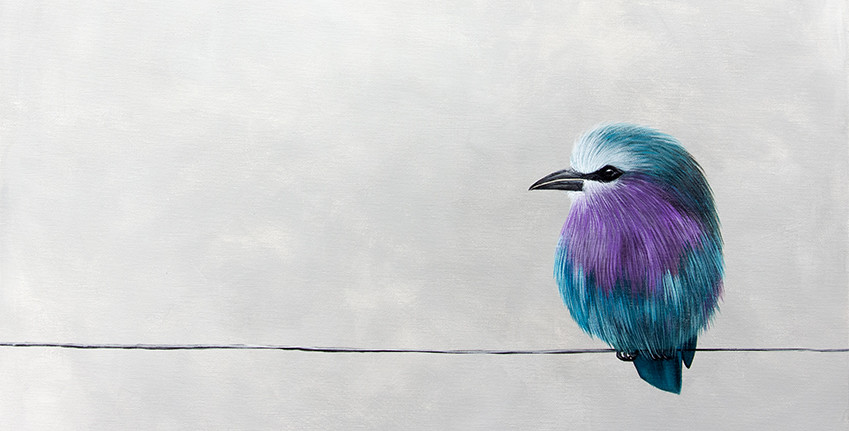 Mr. Purple - slideshow