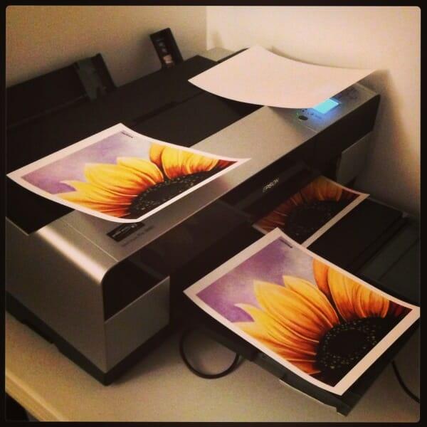 sunflower_printing_feb13