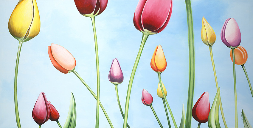 Tulip Landscape - slideshow