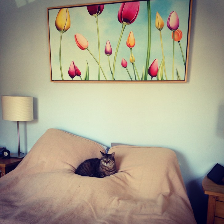 Lola and Tulip Landscape