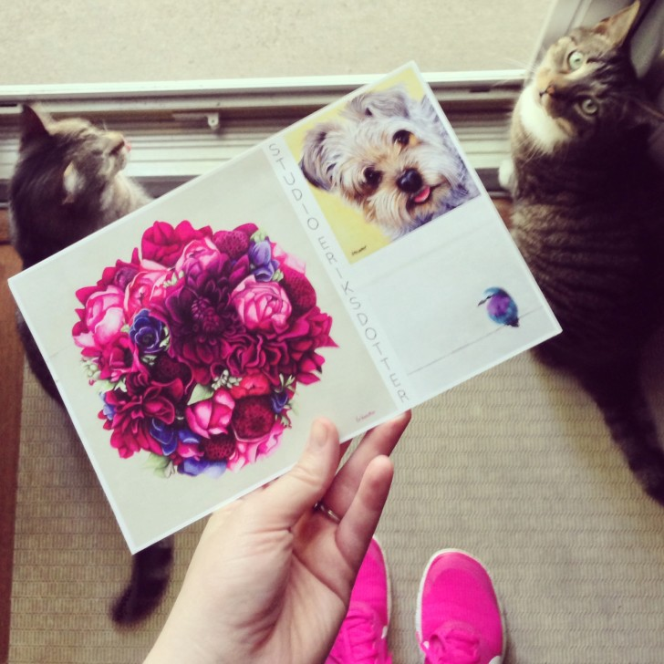postcard follow-up on mailing