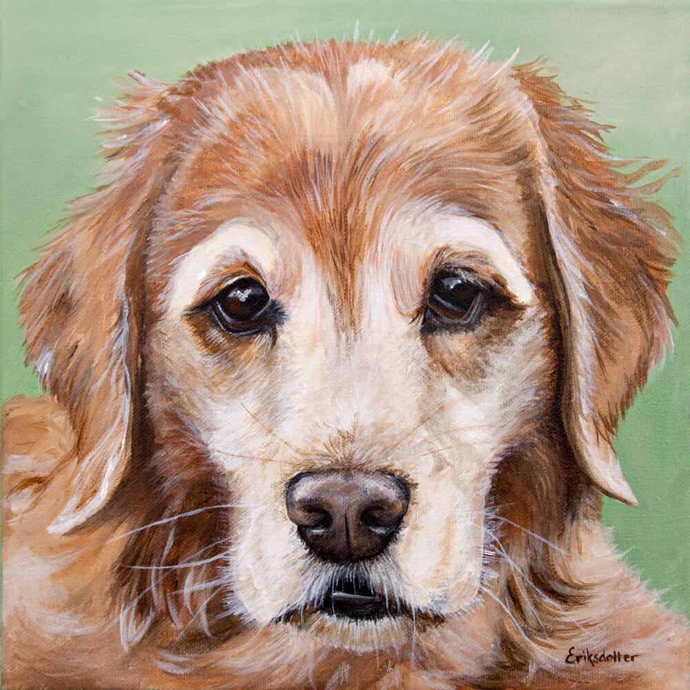 Pet portrait of a Golden Retriever by artist Erica Eriksdotter