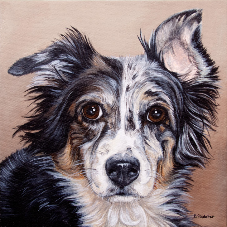 Original pet portrait of Dos by Erica Eriksdotter