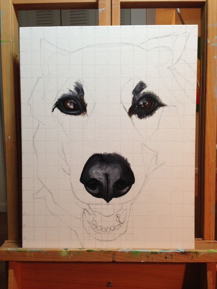 Sasha pet portrait in progress 4 aug 2013