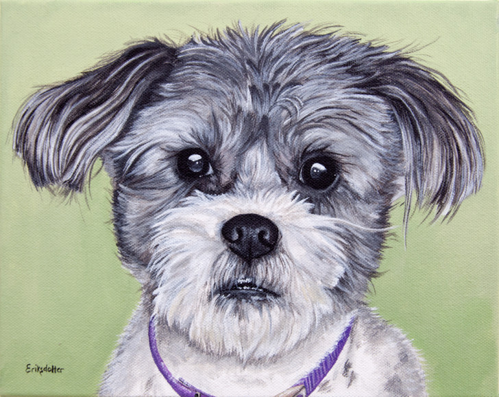 Pet portrait painting of a Shih Tzu and Jack Russel mix by fine arts painter Erica Eriksdotter