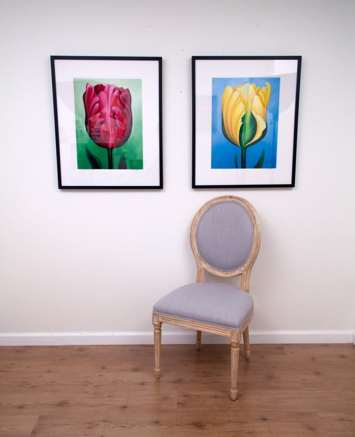 Unwavering Tulips - Magenta and Yellow, limited editions by Erica Eriksdotter