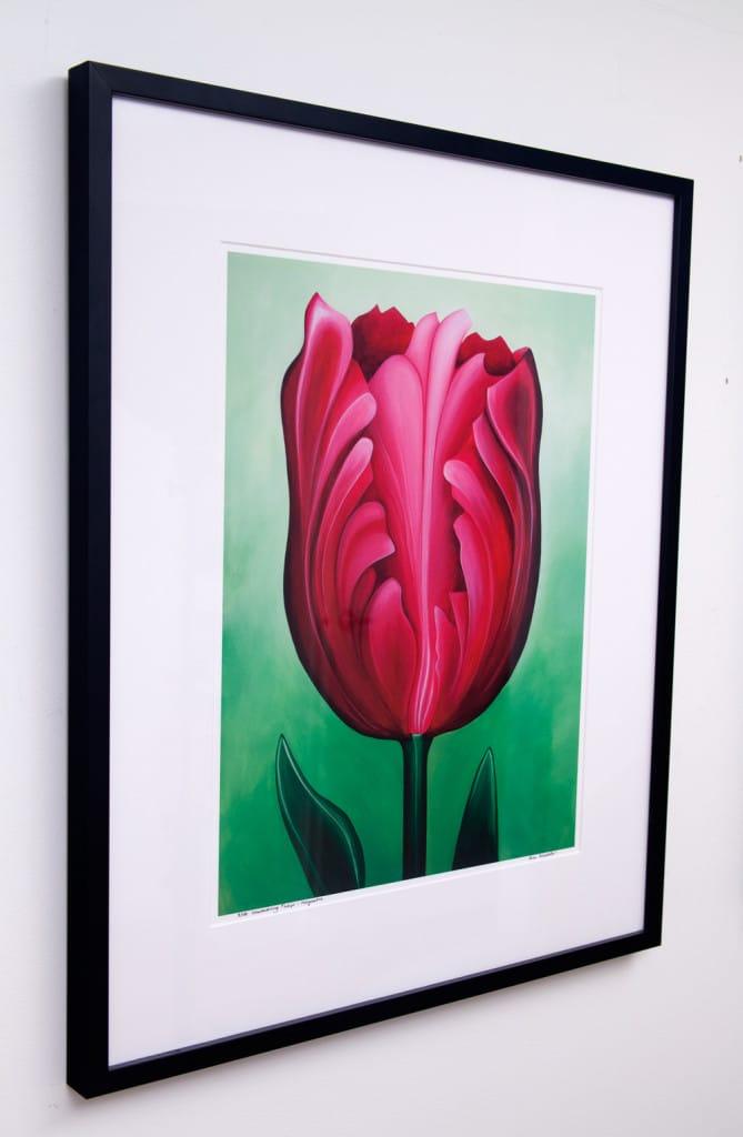 Unwavering Tulip - Magenta, limited edition by Erica Eriksdotter
