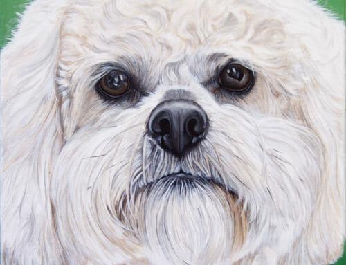 Original Painting: Boomer's Portrait