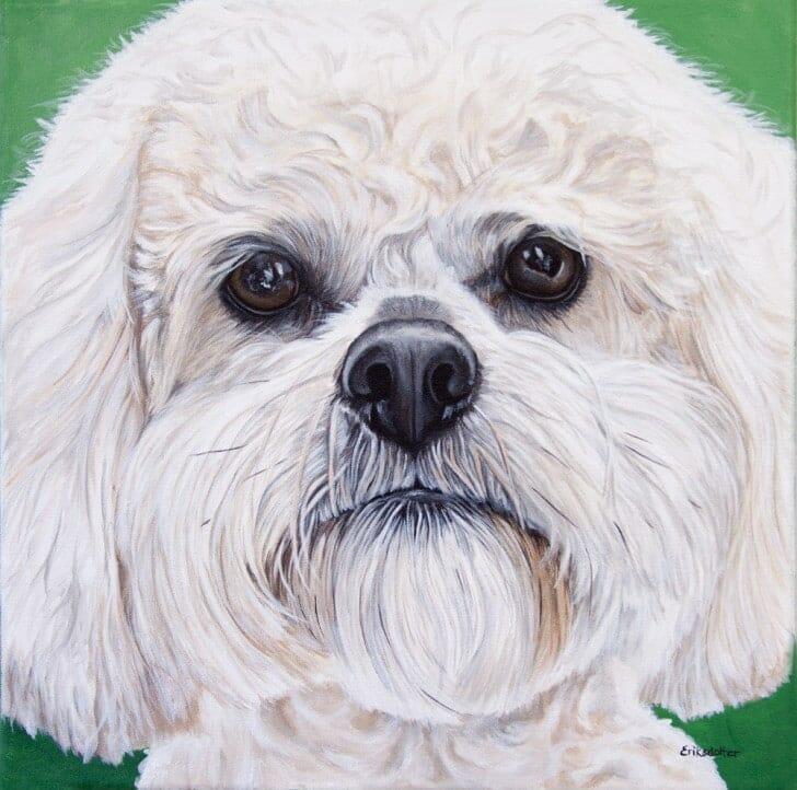 Boomer's Portrait, original acrylic by Erica Eriksdotter