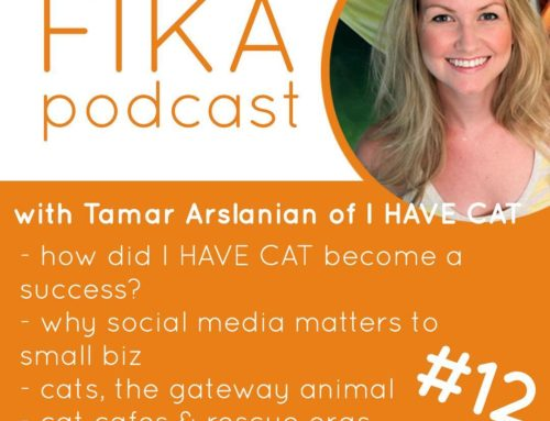 Fika Podcast 012 – Cat and Small Biz Talk with I HAVE CAT
