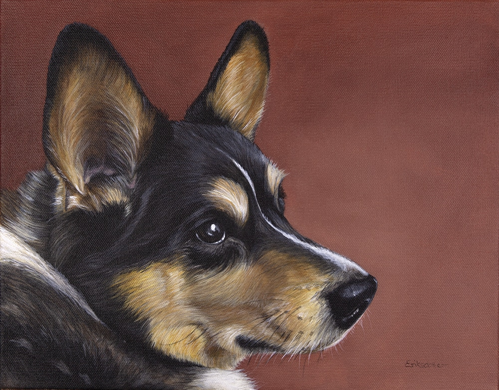 Custom dog portrait of a welsh corgi by artist Erica Eriksdotter
