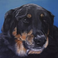 Roxy's Pet Portrait - original painting by Erica Eriksdotter of Studio Eriksdotter