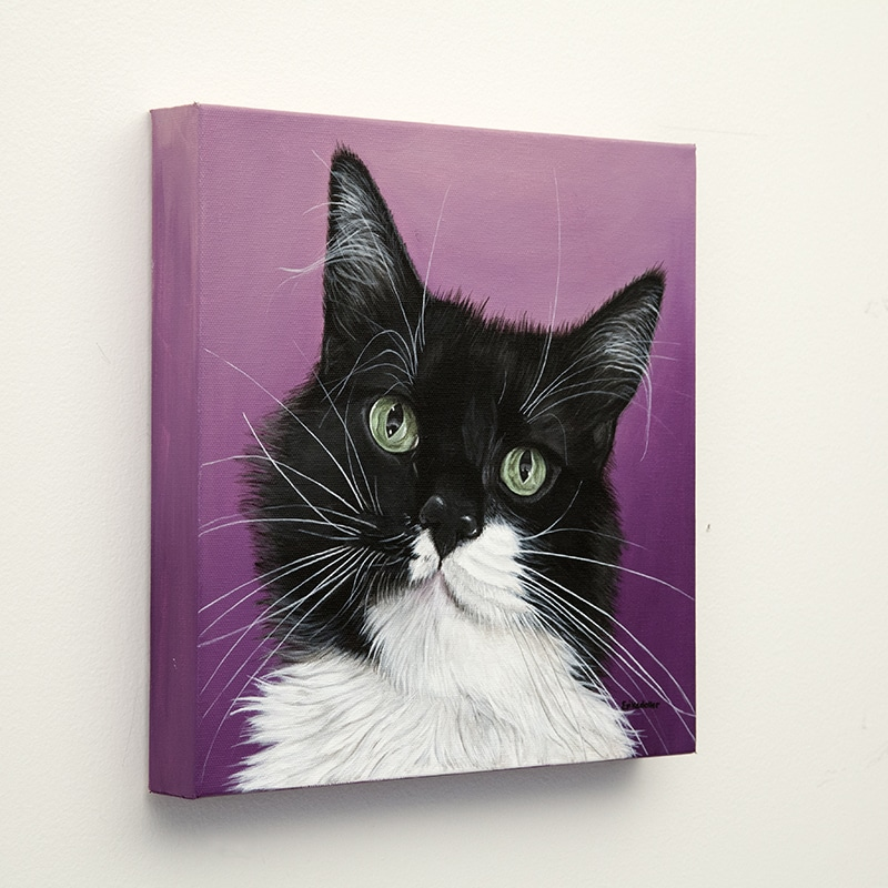 Pashy's original pet portrait of a black and white cat on purple background