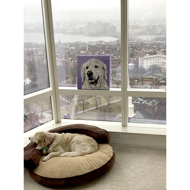 Customer photo of Rosie's original pet portrait of a golden retriever on lavender background overlooking Boston harbor