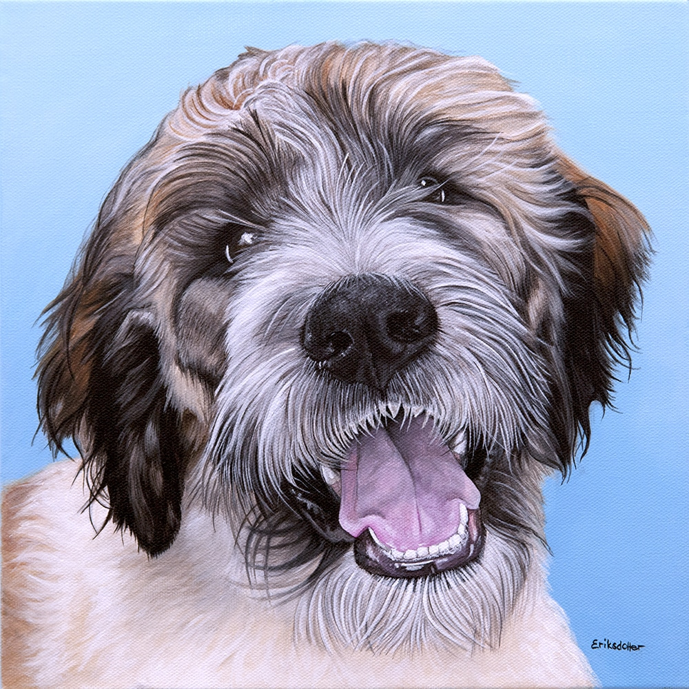 Custom dog portrait of a Saint Berdoodle dog by fine arts painter Erica Eriksdotter