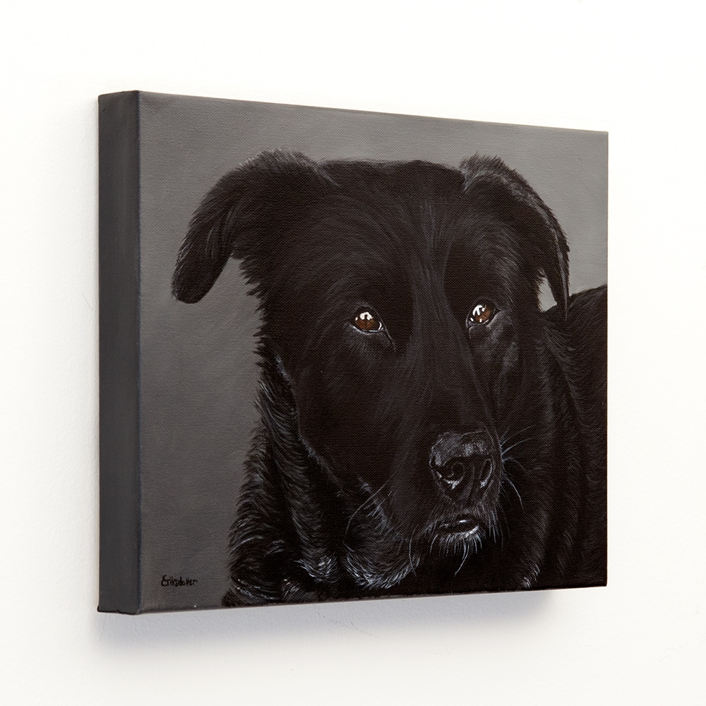 Custom dog portrait of a labrador and border collie mix by fine arts painter Erica Eriksdotter, left