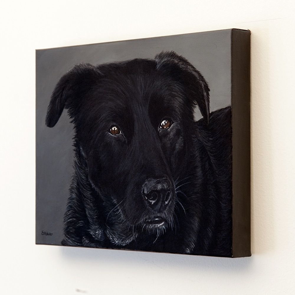 Custom dog portrait of a labrador and border collie mix by fine arts painter Erica Eriksdotter, right