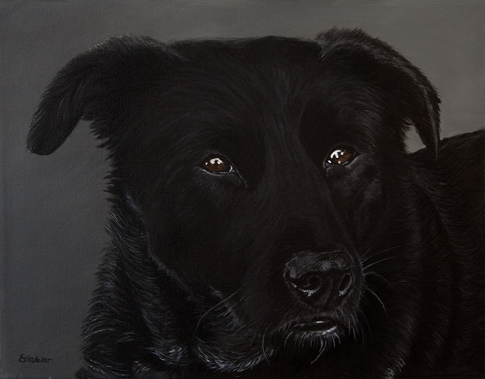 Custom dog portrait of a labrador and border collie mix by fine arts painter Erica Eriksdotter, close up