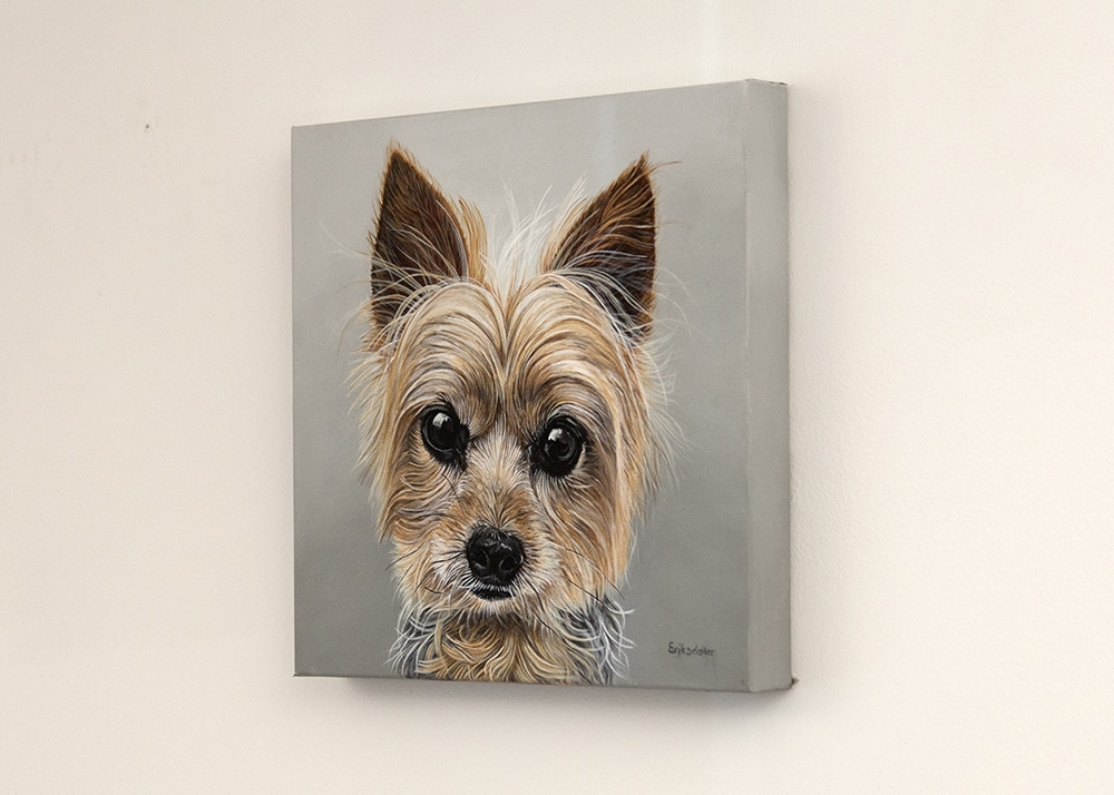Custom dog portrait of a yorkshire terrier dog by fine arts painter Erica Eriksdotter