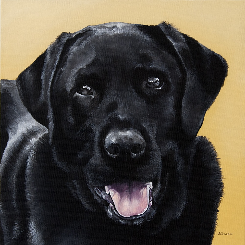 Custom dog portrait of a black labrador dog by fine arts painter Erica Eriksdotter