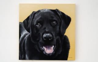 Custom dog portrait of a black labrador dog by fine arts painter Erica Eriksdotter