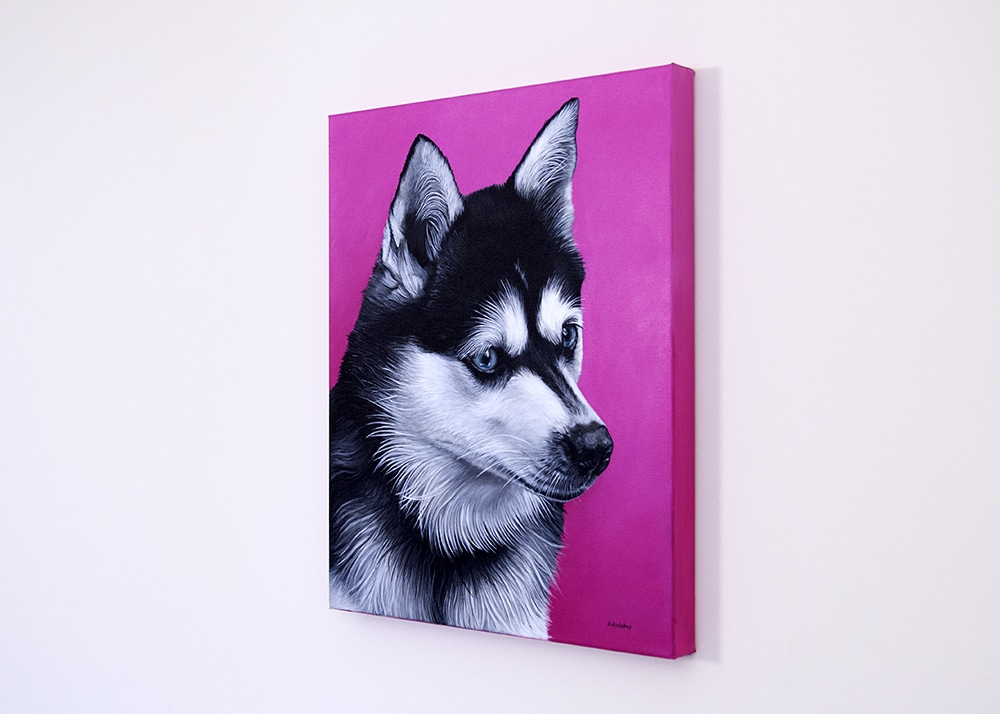 Custom dog portrait of an Alaskan Klee Kai dog by fine arts painter Erica Eriksdotter