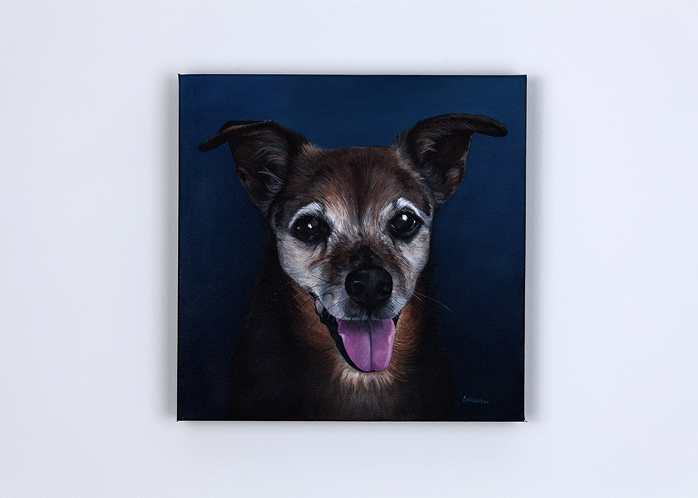 Custom dog portrait of a jack russell mix by artist Erica Eriksdotter