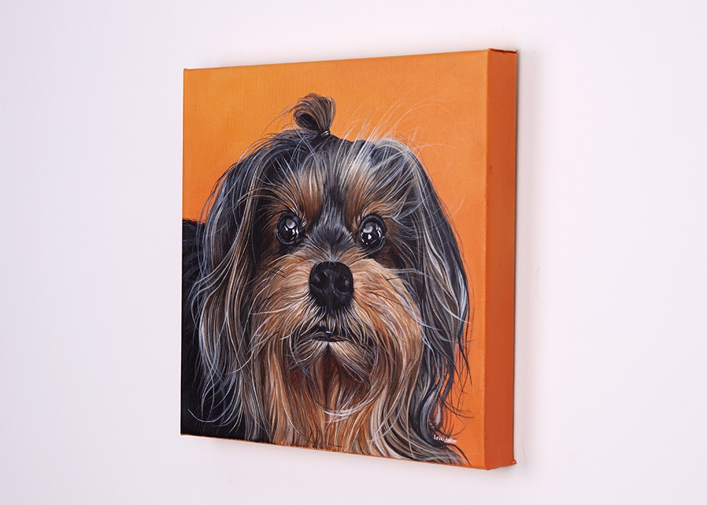 Custom dog portrait of a yorkshire terrier by artist Erica Eriksdotter