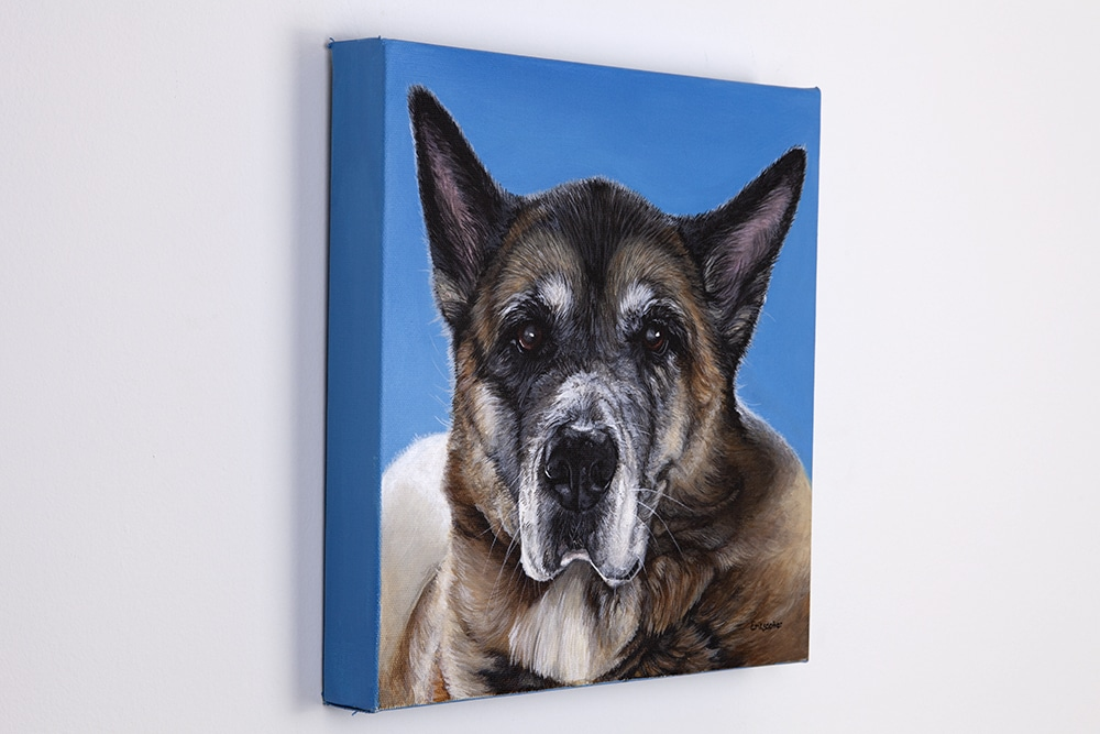 Custom dog portrait of a akita by artist Erica Eriksdotter